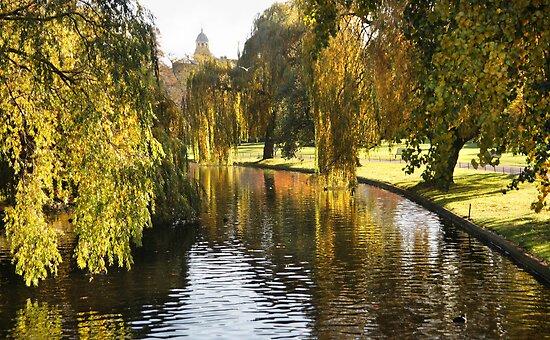 Regent's Park by Lucy Hollis