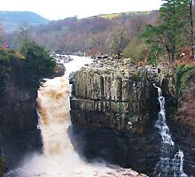 High Force by shaz