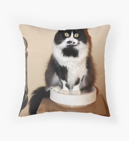 Change the water bottle! Throw Pillow