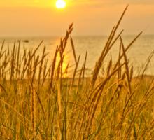 Sunset at Montague Beach Sticker