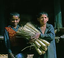 The Broom Salesmen by Terry Shumaker