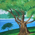 MORETON BAY FIG  (BOTANICAL GARDENS, SYDNEY) by Rose Langford