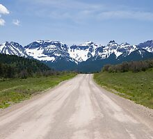 Ouray County Road 5 by bluerabbit