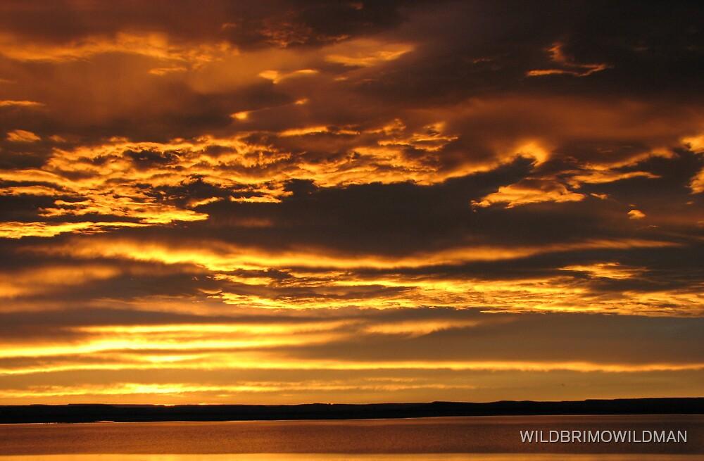 Heavens Of Gold! by WILDBRIMOWILDMAN