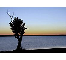 Lonley Tree! Photographic Print