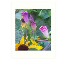 Beautiful Cone Shaped Flowers Art Print