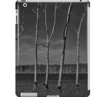 March Madness iPad Case/Skin