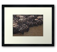 The Watering Hole Framed Print