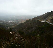 Desolate Roadtrip by JenniferC