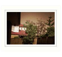 My backyard - Pinhole photography Art Print