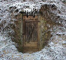 Icy cellar by Jörg Holtermann