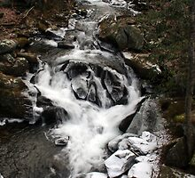 Snowy Falls by Anthony Pierce