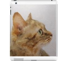 Painted: Little Miss Understood iPad Case/Skin