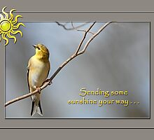 Sending some sunshine your way . . . by Bonnie T.  Barry