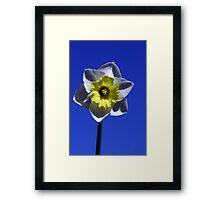 Against Blue Framed Print