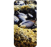 Mussel group      iPhone Case/Skin