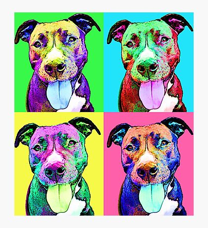 Pit Bull Pop Art Photographic Print