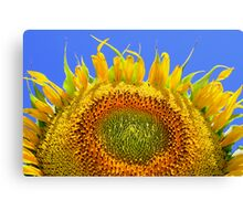 Sun Bather Canvas Print