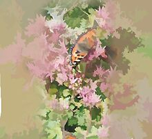 Butterflies on the Sedum by hilarydougill