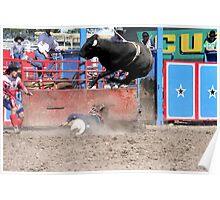 Flying Bull Poster