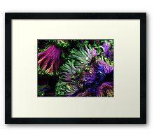 Nature's Color Framed Print