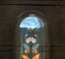 Butterflies in a Glass Bell Jar Sticker