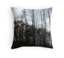 Crisp and Clear   Copyright 2008 By PhyllisAnne Pesce Throw Pillow