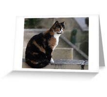 I am watching you Greeting Card