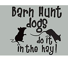 Barn Hunt dogs do it in the straw! Photographic Print