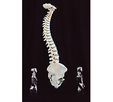 Spine Walk Photographic Print