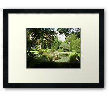 Summer heat Framed Print