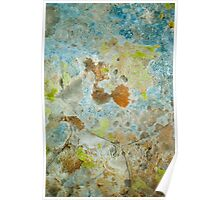 Lichen Covered Rock Poster