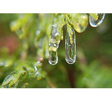Double Ice Drops Photographic Print