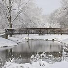 snowy bridge by jude walton