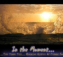 In the Moment - an eagle rises out of the sea by wondawe