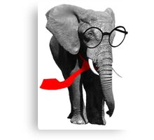 Cool Elephant Canvas Print