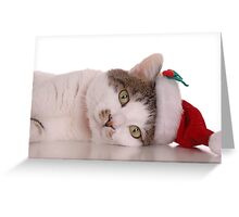 Santa Cat Greeting Card