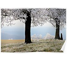 Frosted View Poster