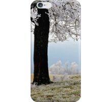 Frosted View iPhone Case/Skin