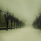 winter mood by burstlive