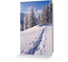 Winter Hike Greeting Card