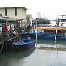 Fishing boats at Tai O village Lantau Island - Hong Kong by Camelot