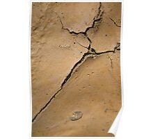 Mud Crack Poster