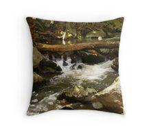 Rocks & Water Painted Microsoft Digital Imaging Pro 10 Throw Pillow