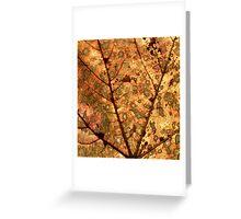 Orange Leaf Greeting Card