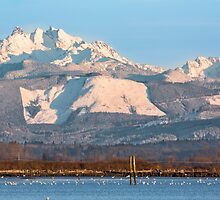 Three Fingers Mountain and Big Bear Mountain by Jim Stiles