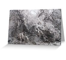 Black and white in color Greeting Card