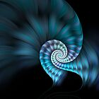 Nautilus by featherfoot