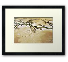 Cape York Framed Print