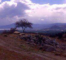 landscape by marcusmelto